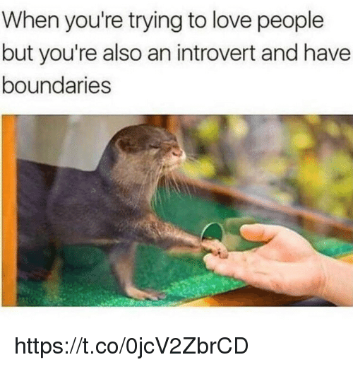 Introvert, Love, and Memes: When you're trying to love people  but you're also an introvert and have  boundaries https://t.co/0jcV2ZbrCD