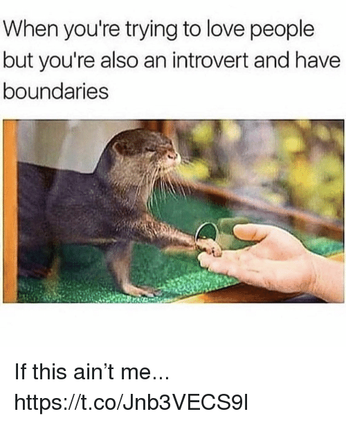 Introvert, Love, and Memes: When you're trying to love people  but you're also an introvert and have  boundaries If this ain't me... https://t.co/Jnb3VECS9l