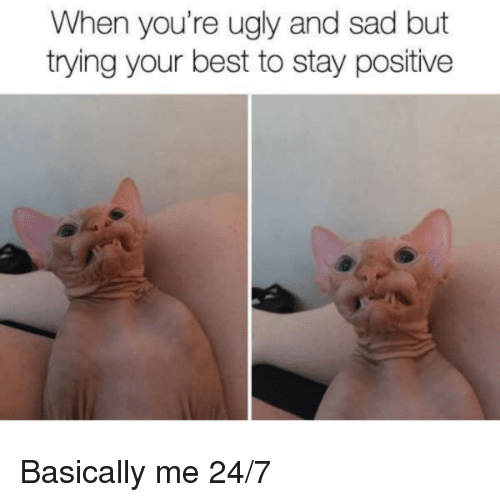 Youre Ugly: When you're ugly and sad but  trying your best to stay positive Basically me 24/7