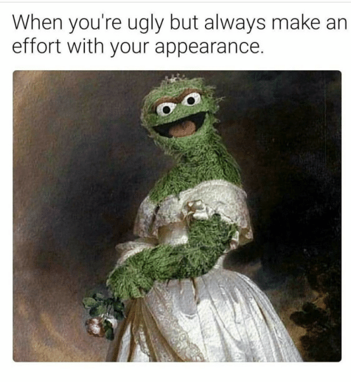 Youre Ugly: When you're ugly but always make  effort with your appearance.