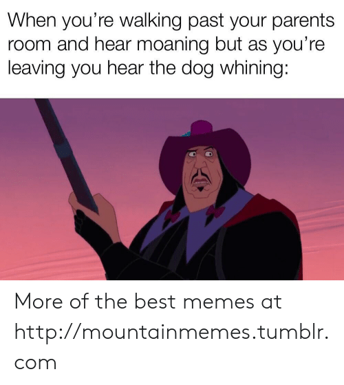 Memes, Parents, and Tumblr: When you're walking past your parents  room and hear moaning but as you're  leaving you hear the dog whining: More of the best memes at http://mountainmemes.tumblr.com