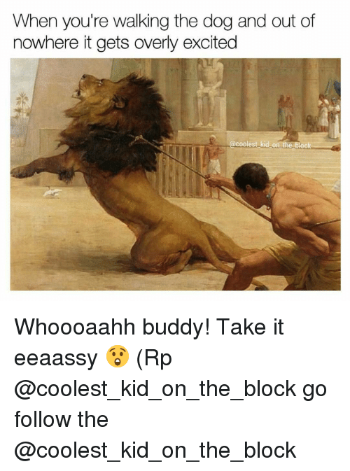 Excition: When you're walking the dog and out of  nowhere itgets overly excited  coolest kid on t  block Whoooaahh buddy! Take it eeaassy 😲 (Rp @coolest_kid_on_the_block go follow the @coolest_kid_on_the_block