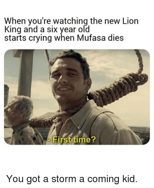 Crying, Dank, and Mufasa: When you're watching the new Lion  King and a six year old  starts crying when Mufasa dies  Hirst time You got a storm a coming kid.