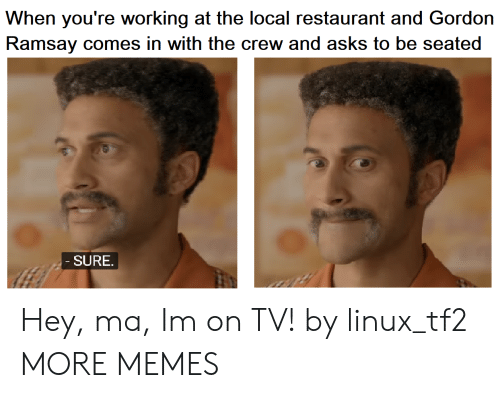 Dank, Gordon Ramsay, and Memes: When you're working at the local restaurant and Gordon  Ramsay comes in with the crew and asks to be seated  SURE Hey, ma, Im on TV! by linux_tf2 MORE MEMES