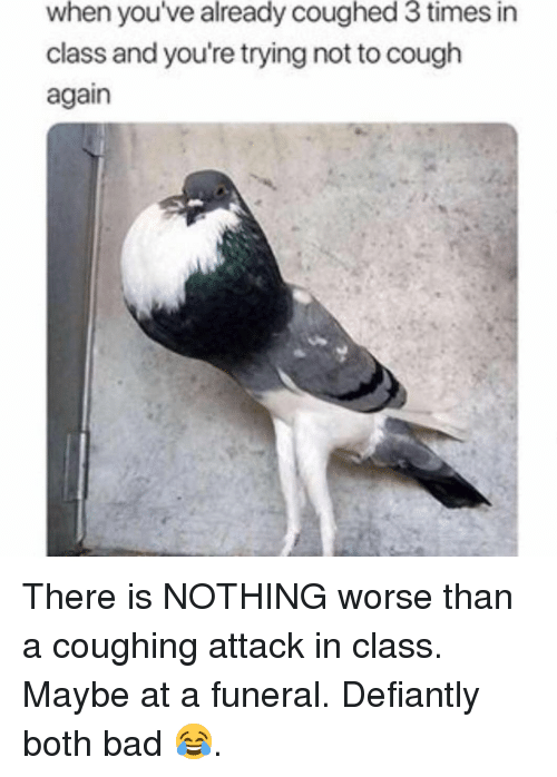 Bad, Funny, and Class: when you've already coughed 3 times in  class and you're trying not to cough  again There is NOTHING worse than a coughing attack in class. Maybe at a funeral. Defiantly both bad 😂.