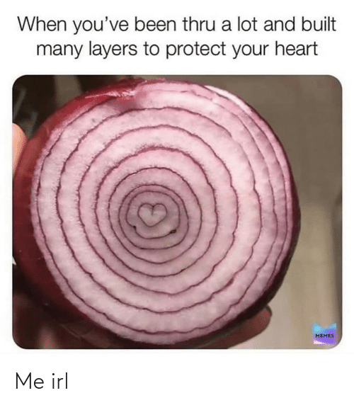 Heart Memes: When you've been thru a lot and built  many layers to protect your heart  MEMES Me irl