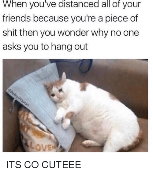 Pieces Of Shits: When you've distanced all of your  friends because you're a piece of  shit then you wonder why no one  asks you to hang out ITS CO CUTEEE