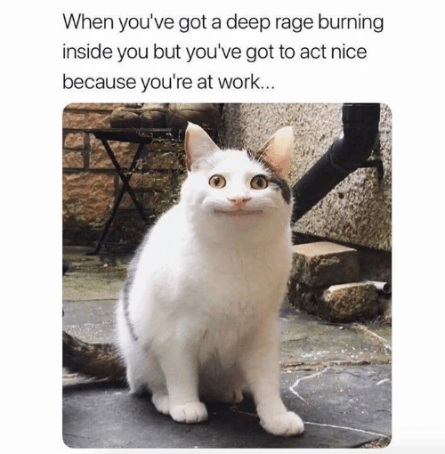 Memes, Work, and Nice: When you've got a deep rage burning  inside you but you've got to act nice  because you're at work...