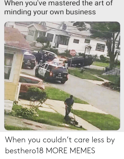 Care Less: When you've mastered the art of  minding your own business  STOP  POUL When you couldn't care less by besthero18 MORE MEMES