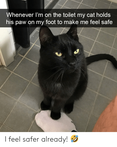 Cats, Cat, and Foot: Whenever I'm on the toilet my cat holds  his paw on my foot to make me feel safe I feel safer already! 🤣