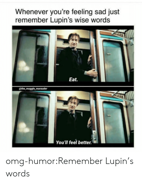 Muggle: Whenever you're feeling sad just  remember Lupin's wise words  Eat.  @the muggle marauder  You'lI feel better. omg-humor:Remember Lupin's words