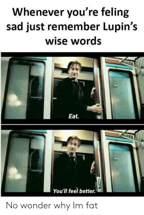 Fat, Sad, and Wonder: Whenever you're feling  sad just remember Lupin's  wise words  Eat.  You'll feel better No wonder why Im fat