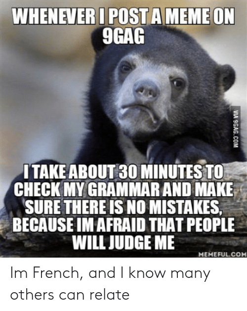 No Mistakes: WHENEVERI POSTA MEME ON  9GAG  ITAKEABOUT 30 MINUTES TO  CHECK MY GRAMMAR AND MAKE  SURE THERE IS NO MISTAKES  BECAUSE IM AFRAID THAT PEOPLE  WILL JUDGE ME  MEMEFUL.CO Im French, and I know many others can relate