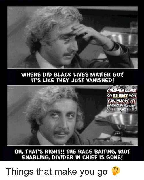 Vanishment: WHERE DID BLACK LIVES MATTER GO?  IT'S LIKE THEY JUST VANISHED!  COMMON SENSE  BLUNT YOU  CAN SMOKE IT!  TREADONYS  OH, THAT'S RIGHT!! THE RACE BAITING, RIOT  ENABLING, DIVIDER IN CHIEF IS GONE! Things that make you go 🤔