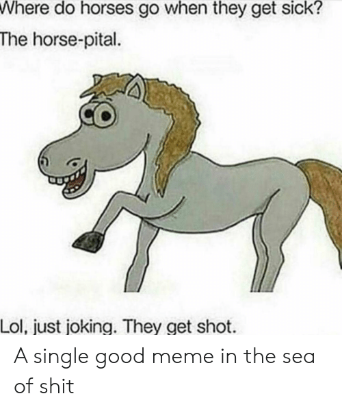 Joking: Where do horses go when they get sick?  The horse-pital  Lol, just joking. They get shot A single good meme in the sea of shit