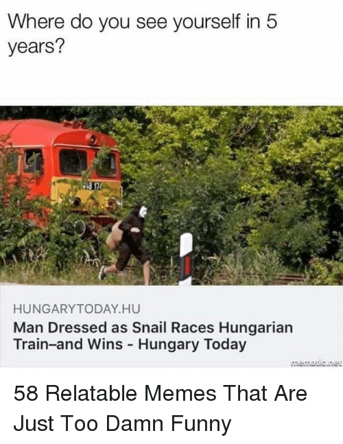 Hungarian: Where do you see yourself in5  years?  HUNGARYTODAY HU  Man Dressed as Snail Races Hungarian  Train-and Wins Hungary Today 58 Relatable Memes That Are Just Too Damn Funny