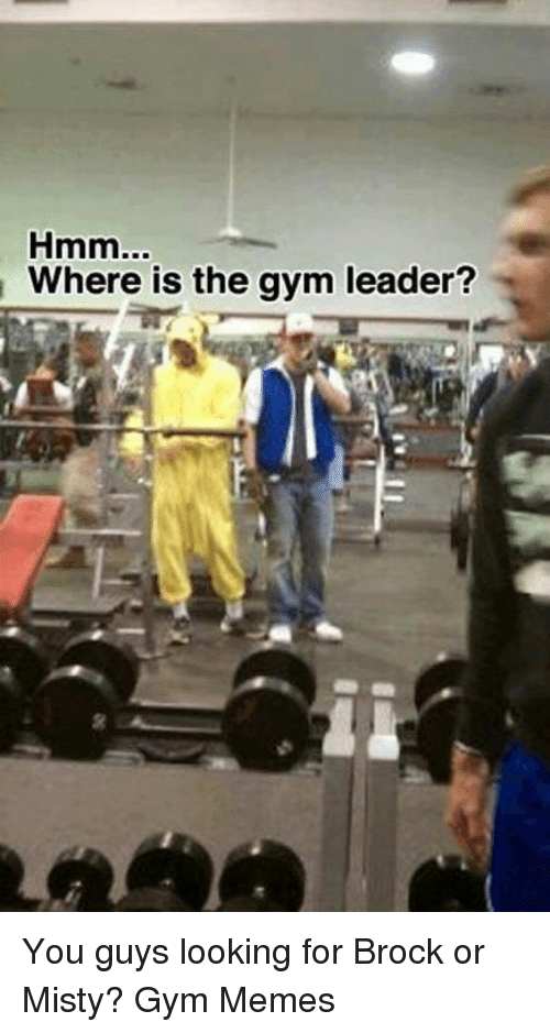 Leader and  Gym Leader: Where is the gym leader? You guys looking for Brock or Misty? 
