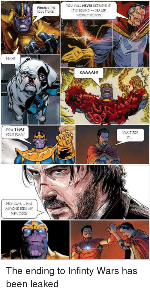 Funny, Infinity, and Never: WHERE IS THE  SOUL STONE  You WILL NEVER RETRIEVE IT.  IT S BOUNDSEALED  HAH!  RAAAAH  WAS THAT  YOUR PLAN  WAIT FOR  IT.  HEY GUYS., HAS  ANYONE SEEN MY  NEW DOG The ending to Infinty Wars has been leaked