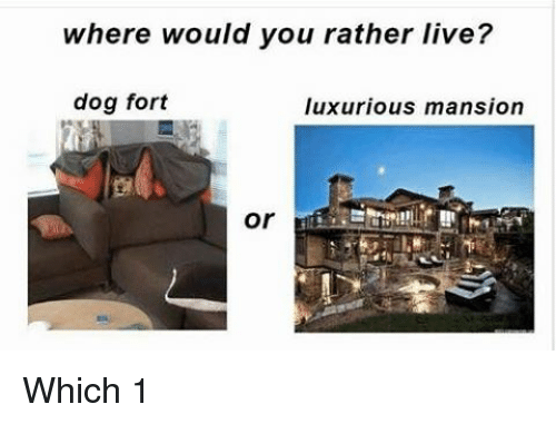 where would you rather live Daniel forces audience members to choose between impossibly bad options, like being shorter versus dying young or being racist versus eating at 7-eleven.