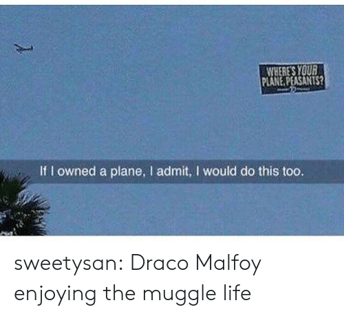 Muggle: WHERES YOU  PLANE PEASANTS?  If I owned a plane, l admit, I would do this too. sweetysan:  Draco Malfoy enjoying the muggle life
