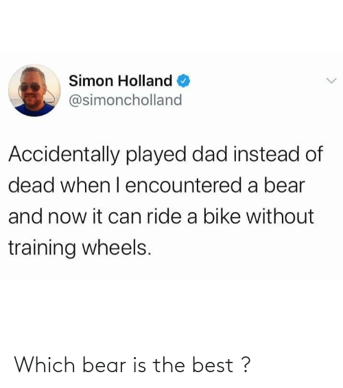 Bear: Which bear is the best ?