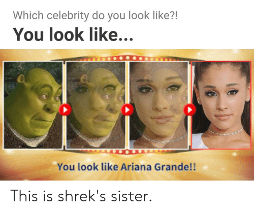 Ariana Grande, Dank Memes, and Celebrity: Which celebrity do you look like?!  You look like..  You look like Ariana Grande!! This is shrek's sister.