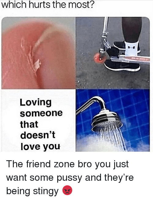 The Friend Zone: which hurts the most?  Loving  someone  that  doesn't  love you The friend zone bro you just want some pussy and they're being stingy 😡
