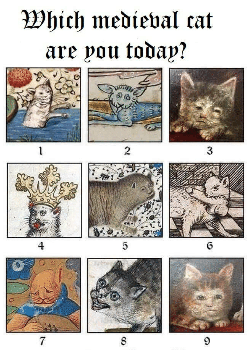 Medieval, Cat, and You: Which medieval cat  are you todap?  2  3  4  7  8  LO