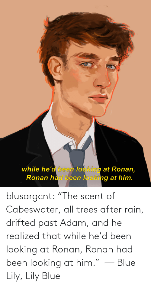 "adam: while he'd been looking at Ronan,  Ronan had been looking at him. blusargcnt:  ""The scent of Cabeswater, all trees after rain, drifted past Adam, and he realized that while he'd been looking at Ronan, Ronan had been looking at him.""  ― Blue Lily, Lily Blue"