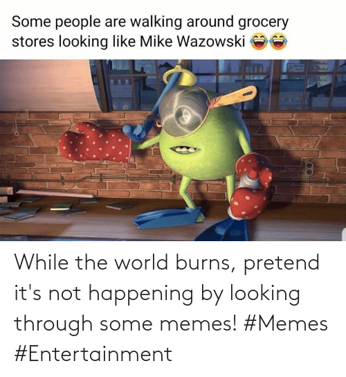 Its Not: While the world burns, pretend it's not happening by looking through some memes! #Memes #Entertainment