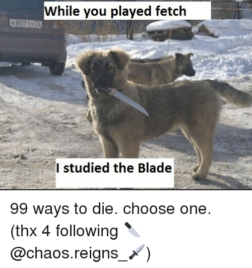 Bladee: While you played fetclh  I studied the Blade 99 ways to die. choose one. (thx 4 following 🔪@chaos.reigns_🗡)
