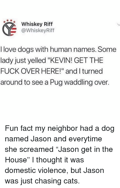 "Love Dogs: Whiskey Riff  @WhiskeyRiff  I love dogs with human names. Some  lady just yelled ""KEVIN! GET THE  FUCK OVER HERE!"" and I turned  around to see a Pug waddling over. Fun fact my neighbor had a dog named Jason and everytime she screamed ""Jason get in the House"" I thought it was domestic violence, but Jason was just chasing cats."