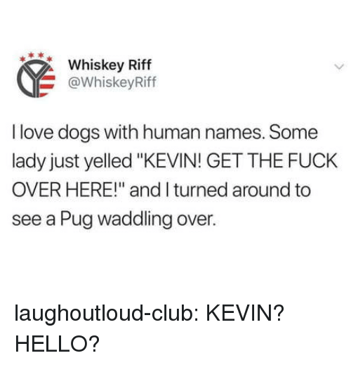 "Love Dogs: Whiskey Riff  @WhiskeyRiff  I love dogs with human names. Some  lady just yelled ""KEVIN! GET THE FUCK  OVER HERE!"" and I turned around to  see a Pug waddling over. laughoutloud-club:  KEVIN? HELLO?"