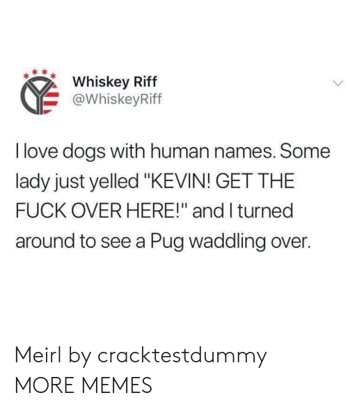 "Love Dogs: Whiskey Riff  @WhiskeyRiff  I love dogs with human names. Some  lady just yelled ""KEVIN! GET THE  FUCK OVER HERE!"" and I turned  around to see a Pug waddling over. Meirl by cracktestdummy MORE MEMES"
