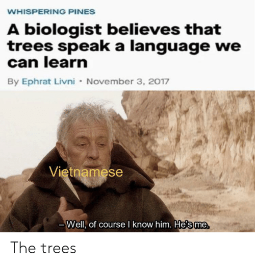 Vietnamese: WHISPERING PINES  A biologist believes that  trees speak a language we  can learn  By Ephrat Livni November 3, 2017  Vietnamese  Well, of course I know him. He's me The trees