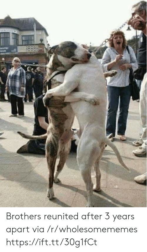 brothers: WHITAY Brothers reunited after 3 years apart via /r/wholesomememes https://ift.tt/30g1fCt