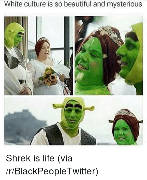 shrek is life: White culture is so beautiful and mysterious <p>Shrek is life (via /r/BlackPeopleTwitter)</p>