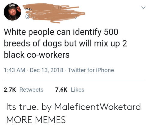 Dank, Dogs, and Iphone: White people can identify 500  breeds of dogs but will mix up 2  black co-workers  1:43 AM- Dec 13, 2018 Twitter for iPhone  2.7KRetweets7.6K Likes Its true. by MaleficentWoketard MORE MEMES