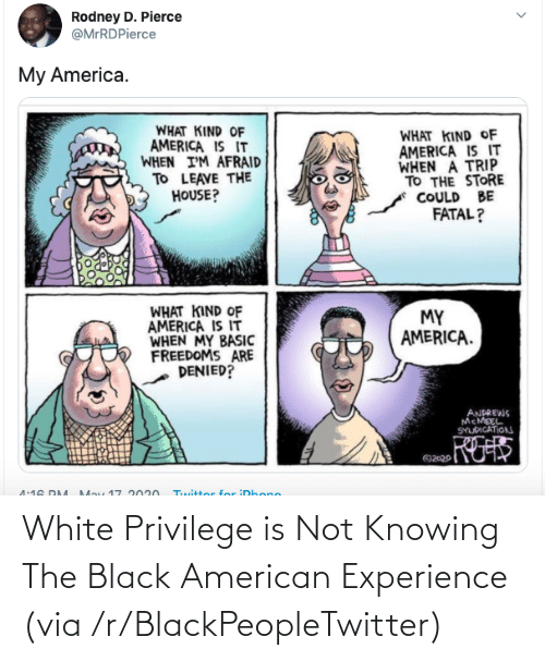 knowing: White Privilege is Not Knowing The Black American Experience (via /r/BlackPeopleTwitter)