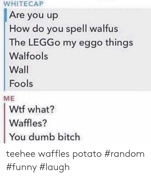 Bitch, Dumb, and Funny: WHITECAP  Are you up  How do you spell walfus  The LEGGO my eggo things  Walfools  Wall  Fools  ME  Wtf what?  Waffles?  You dumb bitch teehee waffles potato #random #funny #laugh
