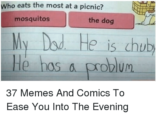 dod: Who eats the most at a picnic?  mosquitos  the dog  My Dod He is chub  He hos a problum <p>37 Memes And Comics To Ease You Into The Evening</p>