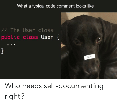 Needs: Who needs self-documenting right?