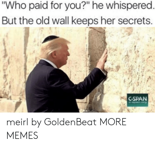 """cspan: Who paid for you?"""" he whispered  But the old wall keeps her secrets  CSPAN meirl by GoldenBeat MORE MEMES"""