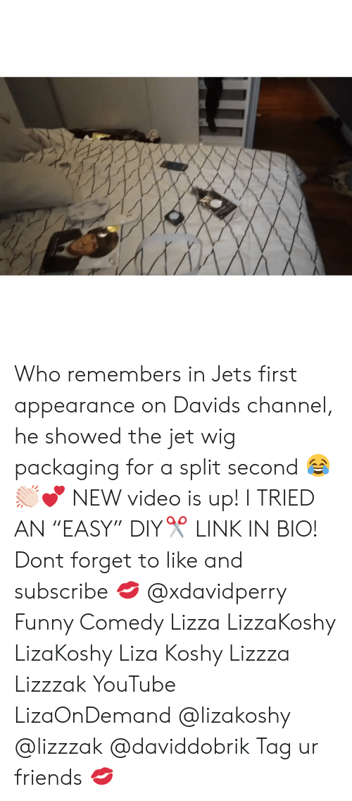 """diy: Who remembers in Jets first appearance on Davids channel, he showed the jet wig packaging for a split second 😂👏🏻💕 NEW video is up! I TRIED AN """"EASY"""" DIY✂️ LINK IN BIO! Dont forget to like and subscribe 💋 @xdavidperry Funny Comedy Lizza LizzaKoshy LizaKoshy Liza Koshy Lizzza Lizzzak YouTube LizaOnDemand @lizakoshy @lizzzak @daviddobrik Tag ur friends 💋"""