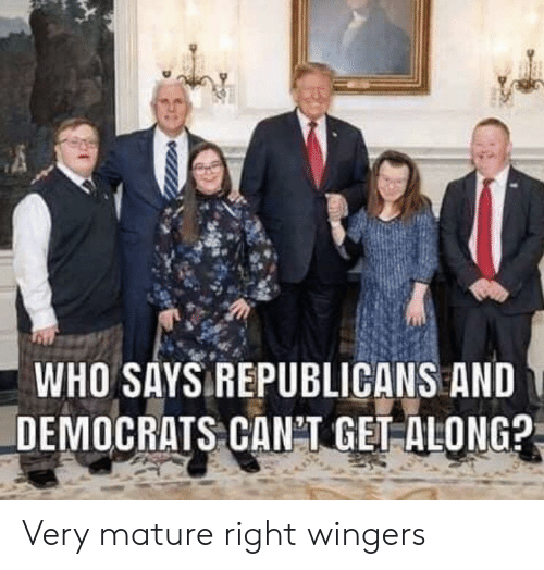 Who, Republicans, and Mature: WHO SAYS REPUBLICANS AND  DEMOCRATS CANT GET ALONG? Very mature right wingers