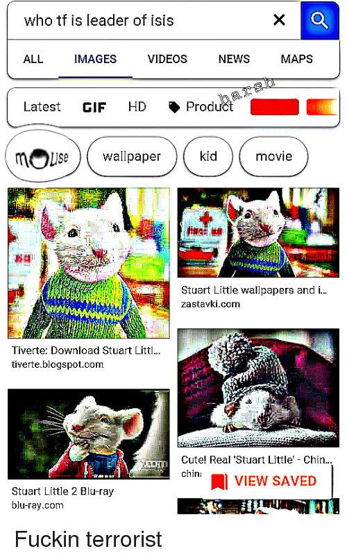 Cute, Gif, and Isis: who tf is leader of isis  ALL IMAGES VIDEOS NEWS MAPS  a.  Latest GIF HD . Product  Stuart Little wallpapers and .  zastavki.com  Tiverte: Download Stuart Littl..  tiverte.blogspot.com  Cute! Real 'Stuart Little' Chin..  chin: 1 VIEW SAVED  Stuart Little 2 Blu-ray  blu-ray.com