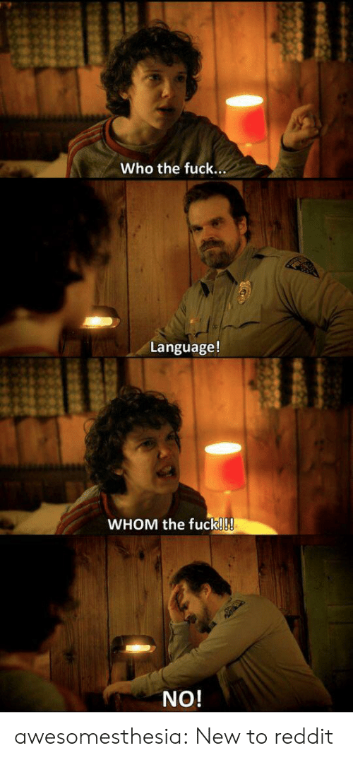 Reddit, Tumblr, and Blog: Who the fuck...  Language!  WHOM the fuck!!!  NO! awesomesthesia:  New to reddit