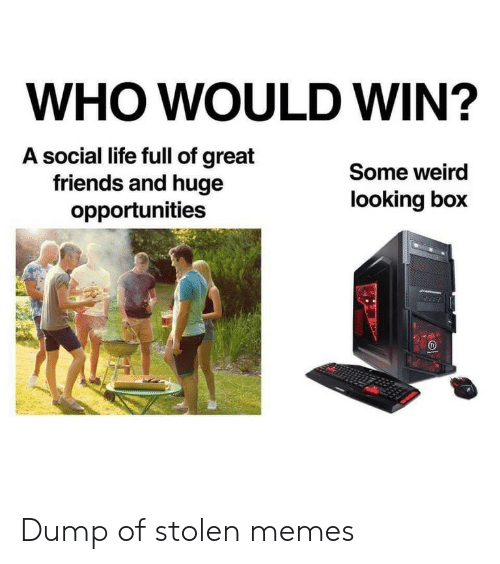 social life: WHO WOULD WIN?  A social life full of great  friends and huge  opportunities  Some weird  looking box Dump of stolen memes