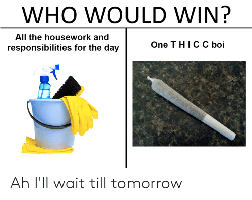Housework, Reddit, and Tomorrow: WHO WOULD WIN?  All the housework and  One T HICC boi  responsibilities for the day Ah I'll wait till tomorrow