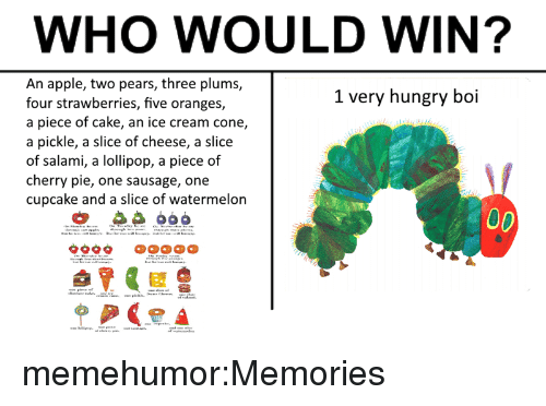 Piece Of Cake: WHO WOULD WIN?  An apple, two pears, three plums,  four strawberries, five oranges,  a piece of cake, an ice cream cone,  a pickle, a slice of cheese, a slice  of salami, a lollipop, a piece of  cherry pie, one sausage, one  cupcake and a slice of watermelon  1 very hungry boi memehumor:Memories